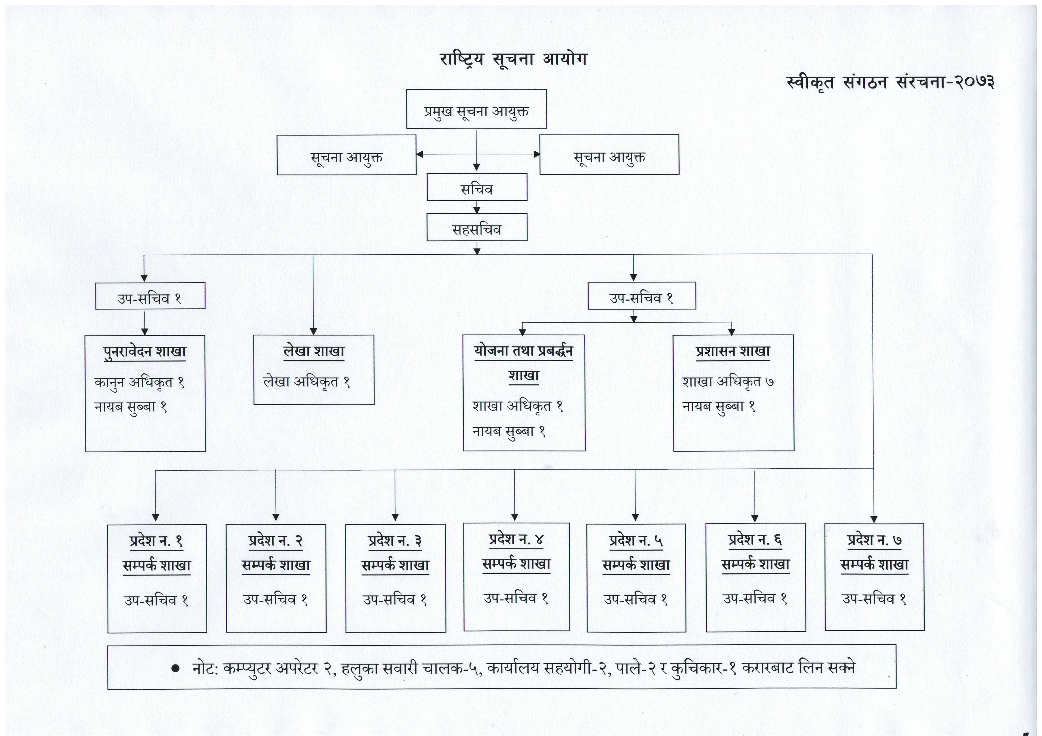 Organizational Structure of NIC